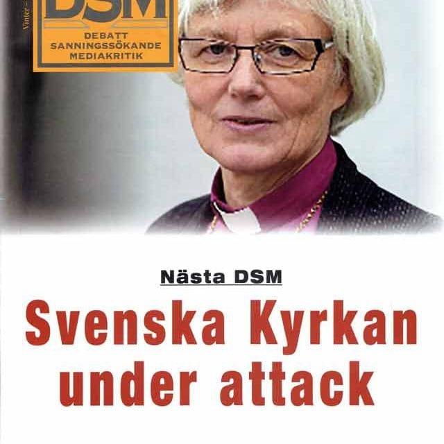 DSM 1-2017
